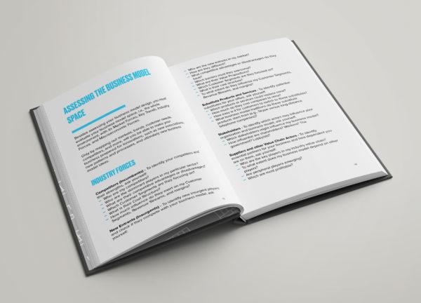 Business Model Assessment
