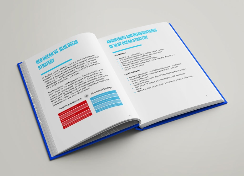 Blue Ocean Strategy - Super Guide Content Example 2